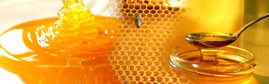 قیمت عسل در کویت