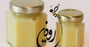 فروش ژل رویال به صورت عمده توسط شرکت رودین مهر آراد