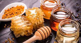 عرضه عسل