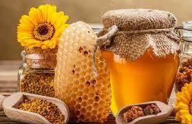 نمایندگی فروش عسل