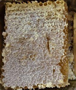 تشخیص موم عسل طبیعی