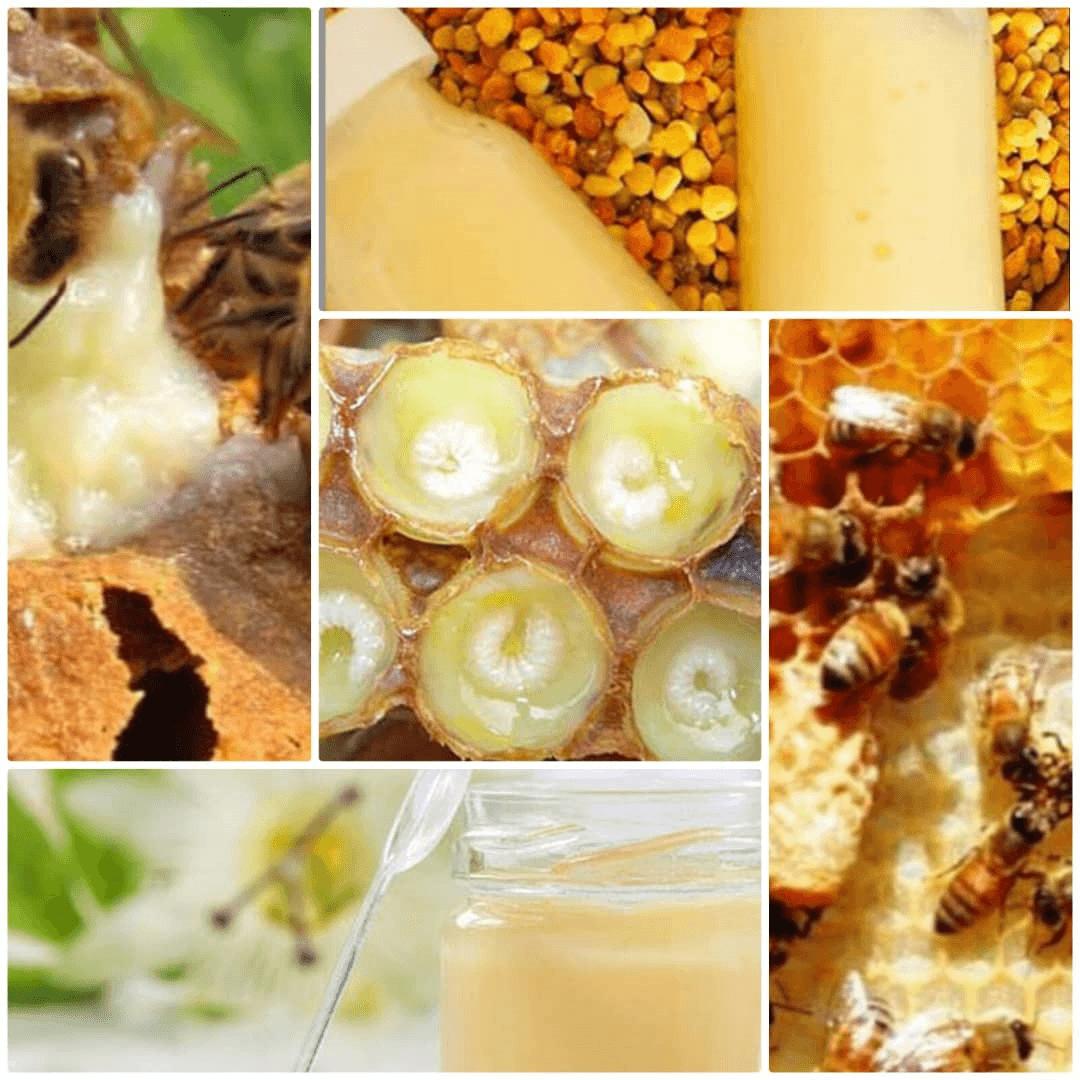 فرآورده های زنبورعسل