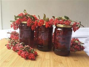 تولید عسل زرشک