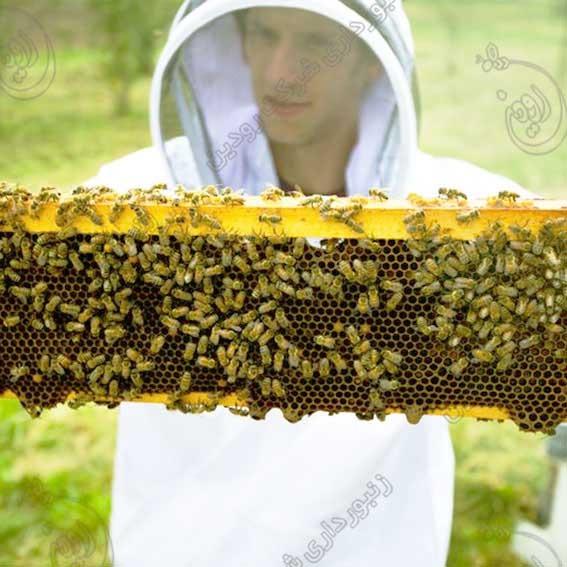 لباس و تجهیزات زنبورداری